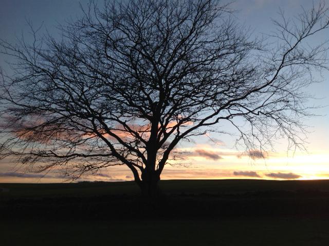 Scotland Sky2